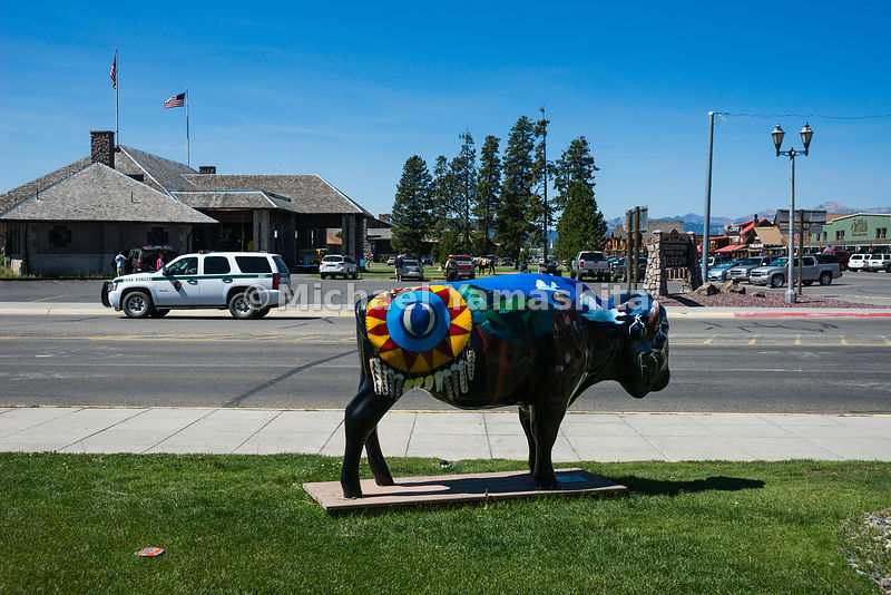 Painted buffalo statue outside the Yellowstone Historic Center, West Yellowstone, Montana...Yellowstone National Park, America's and world's first National Park, 1872, by order of President Grant. Over 2.2 million acres of forest and one of the world's most foremost wildlife sanctuaries. Most famous for it's geothermal features and wildlife.