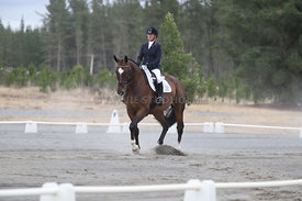 SI_Festival_of_Dressage_310115_Level_1_Champ_0671
