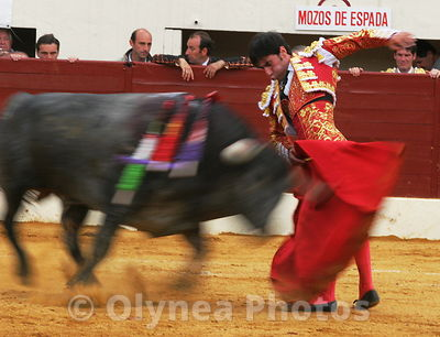 BullFight photos, pictures, picture, agency