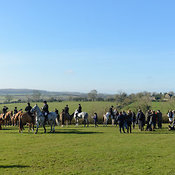 The visit of the Heythrop Hounds 16/2 photos