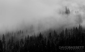 Morning Fog | Keystone, CO