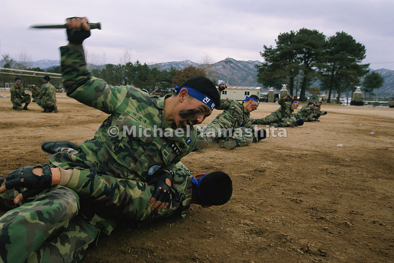 In the remote military camps along the DMZ, a typical day's training for South Korean conscripts includes a bout of hand-to-hand combat in a martial arts drill.
