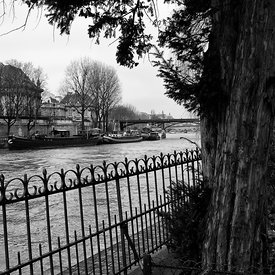 SQUARE DU VERT GALANT PHOTOS DE PARIS