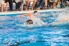 Waihi_Swimming_Sports_2017-14