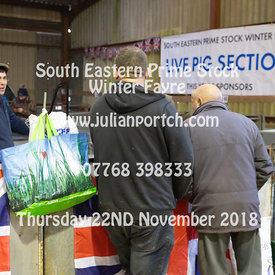 2018-11-22 South Eastern Prime Stock Winter Fayre photos