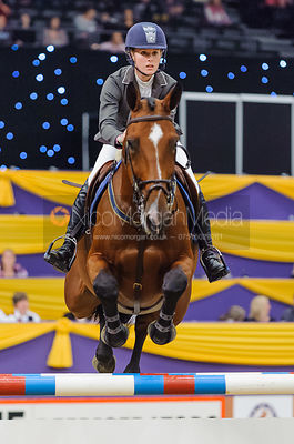 Show Jumpers Gallery photos