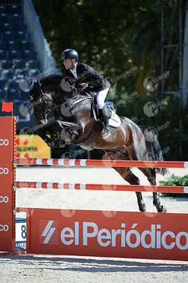 Marcus EHNING ,(GER), SINGULAR LS LA SILLA during Coca-Cola Trofey competition at CSIO5* Barcelona at Real Club de Polo, Barcelona - Spain