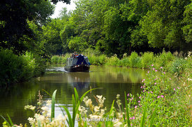 Narrow boat on Kennet and Avon Canal, Bradford on Avon, Wiltshire, England.