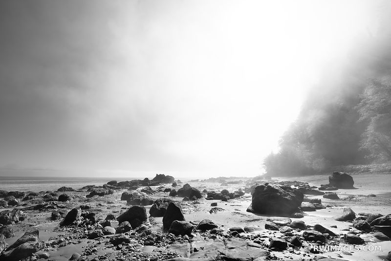 BEACH NEAH BAY FOGGY MORNING OLYMPIC PENINSULA PACIFIC NORTHWEST BLACK AND WHITE