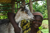 Woman with arm around neck of a goat Kenya Africa