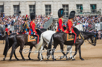 Trooping_the_Colour_8739
