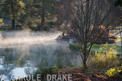 Mist rises from the Well Pool in the Bishop's Palace garden in Wells on a cold November morning
