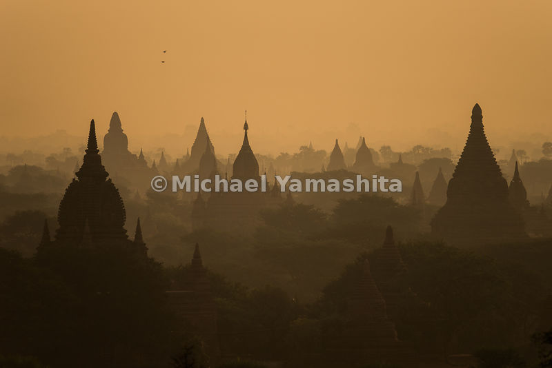 Temple spires silhouetted in sepia light point skyward in Bagan. About 2,500 temples, pagodas and monasteries - some half-ruined and tiny - others still magnificent - remain from an original 10,000 erected after the eleventh-century rise of Bagan Kingdom.