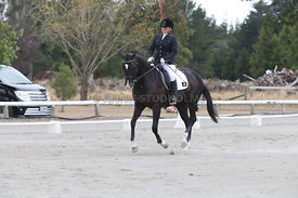 SI_Festival_of_Dressage_310115_Level_5_Champ_0813