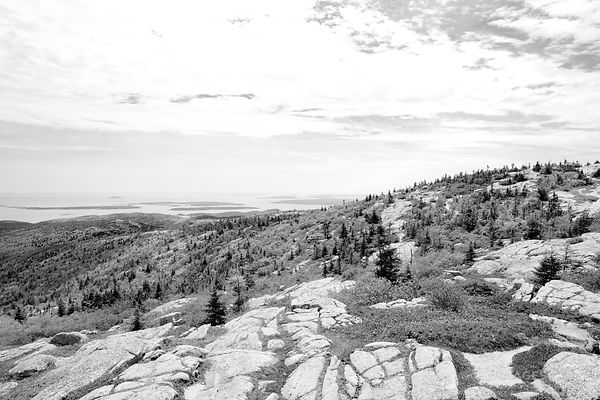 VIEW FROM CADILLAC MOUNTAIN IN SPRING ACADIA NATIONAL PARK MAINE BLACK AND WHITE