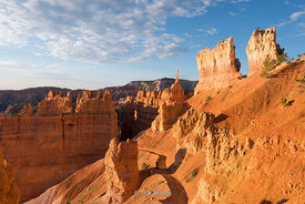 Sunrise on Hoodoos in Bryce Canyon National Park.