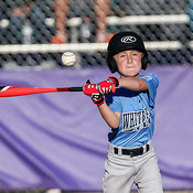 03-30-17 BB LL Wylie AA Nuts v Whitecaps photos