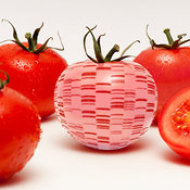 Tomato Genome photos
