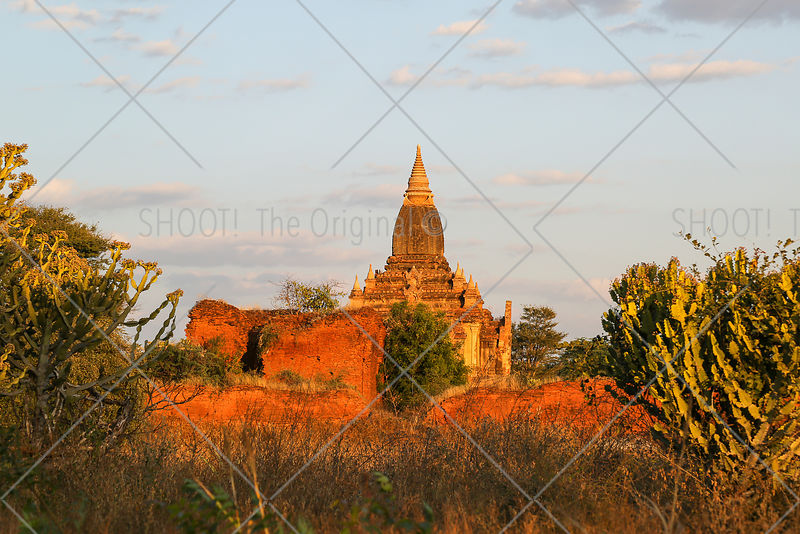Pagode in evening sun, Bagan, Myanmar