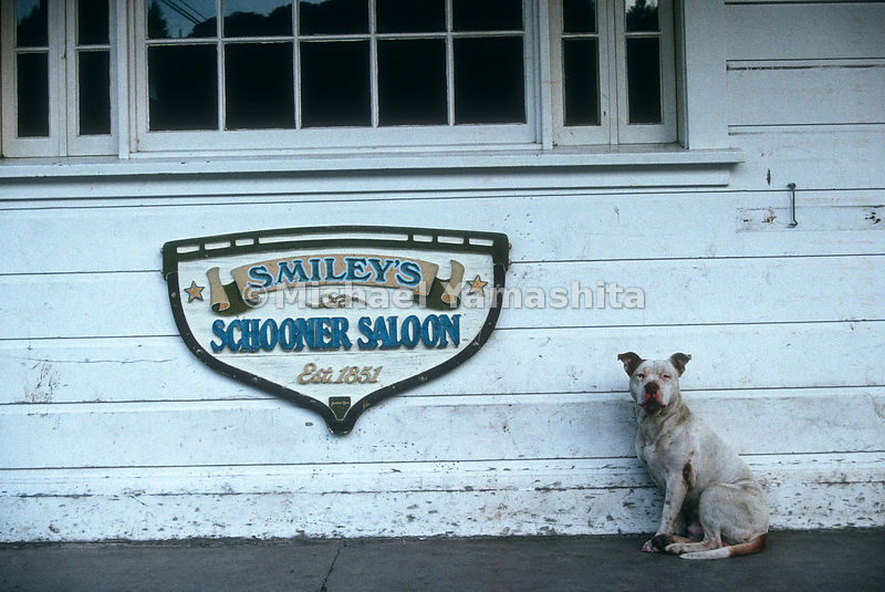 Smiley's Schooner Saloon.Bolinas, California