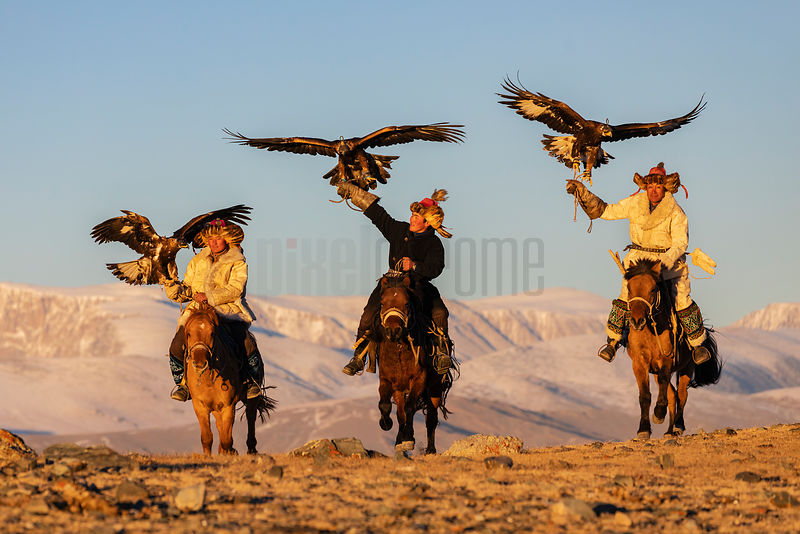 Bekysh and his Sons Running with Golden Eagles