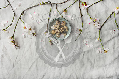 Easter flat-lay with quail eggs and almond tree branches