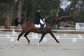 SI_Festival_of_Dressage_300115_Level_9_SICF_0481