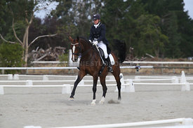 SI_Festival_of_Dressage_300115_Level_9_SICF_0463