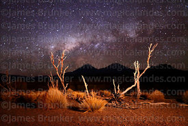 Rustic fence made of Polylepis tarapacana trunks and Milky Way Galactic Centre, Sajama National Park, Bolivia