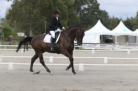 SI_Festival_of_Dressage_310115_Level_4_Champ_0592
