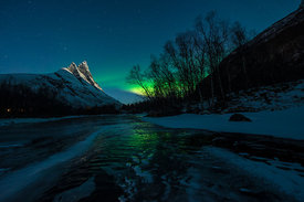 Northern lights (Aurora borealis) Pictures