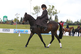 Canty_A_P_131114_Side_Saddle_1239