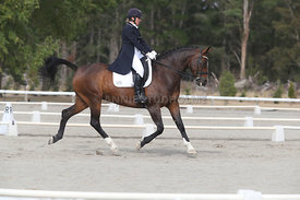 SI_Festival_of_Dressage_300115_Level_9_SICF_0454