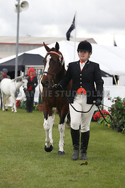 Canty_A_P_121114_All_breeds_0687