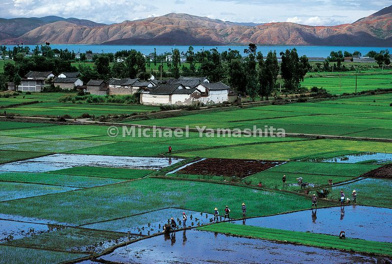 Zheng He was born in a small farming village like this one along the shores of Diandi Lake in Yunnan, a 30 day walk from the ocean.