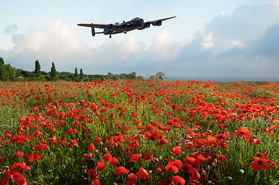 Poppies and Avro Lancaster