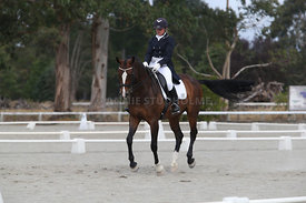 SI_Festival_of_Dressage_300115_Level_9_SICF_0469