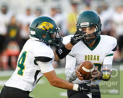 Football: Borah at Boise (DLP) 9/12/14