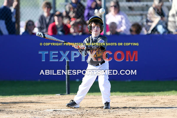 04-08-17_BB_LL_Wylie_Rookie_Wildcats_v_Tigers_TS-445