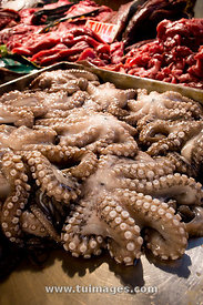octopus in market