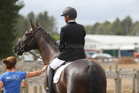 SI_Festival_of_Dressage_310115_Level_1_Champ_0705