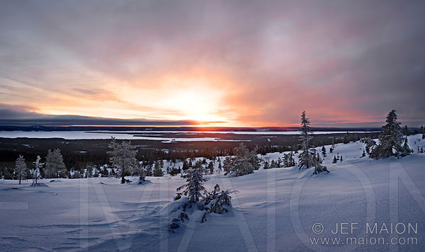 Midwinter on the Arctic Circle images