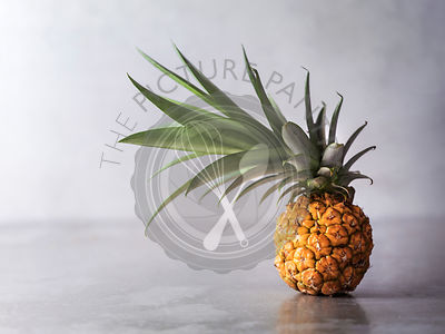 Tilted Pineapple