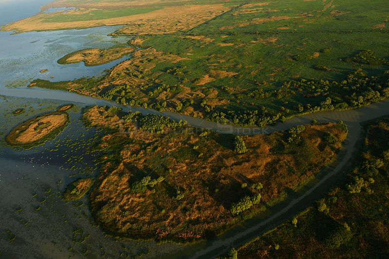 Aerial view over the Danube delta, Danube delta rewilding area, Romania, June 2012