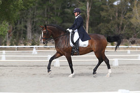 SI_Festival_of_Dressage_300115_Level_9_SICF_0446