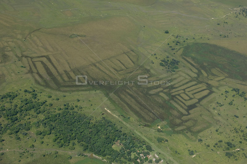 Aerial view of vestiges on the land of ancient agricultural works of primitive people, Beni floodplain, Beni Department, Bolivia.