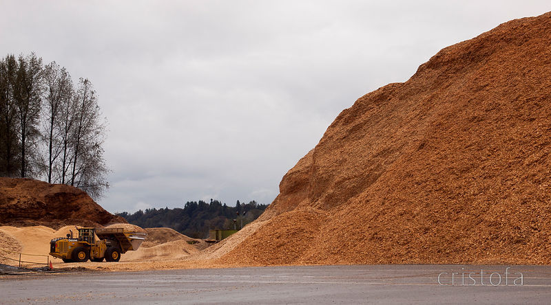 wood pulp chippings near Mission