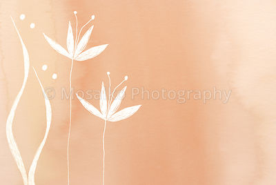 white flower painted on blurred colorful background