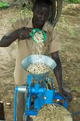Peanuts in machine for making nut paste for culinary purposes Uganda Africa