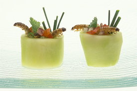 Canapes in the form of cucumber cups containing roasted mealworms with a salad of chopped chives, coriander, shallots and tomato..